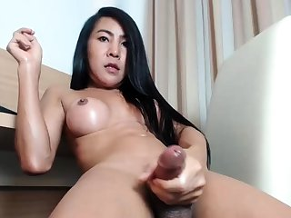 Charming ladyboys enjoy cock masturbation